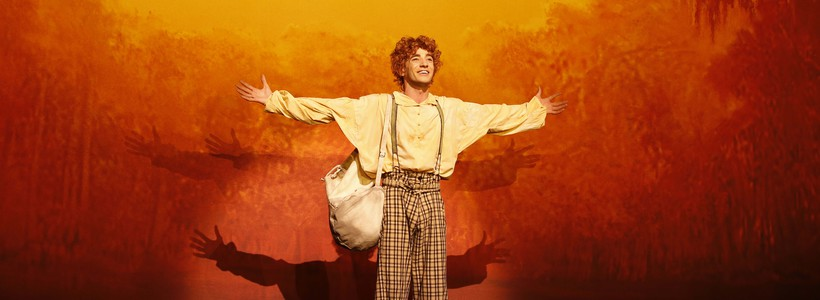 Les aventures de Tom Sawyer, LE MUSICAL